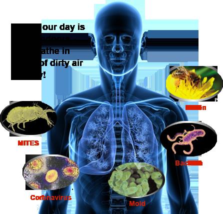 filter-pollen-mites-mold