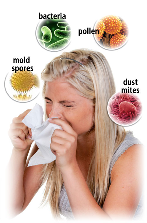 sneeze mold pollen dust bacteria duct cleaning
