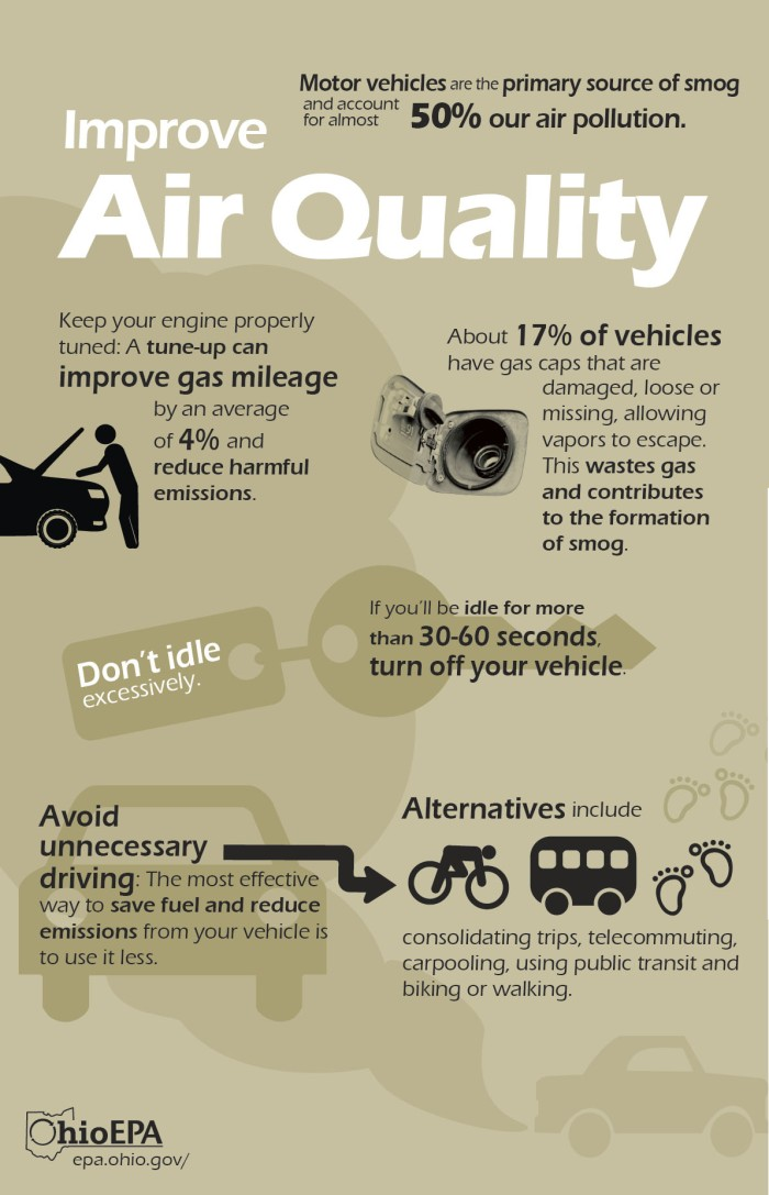 ImproveAirQualityInfographic