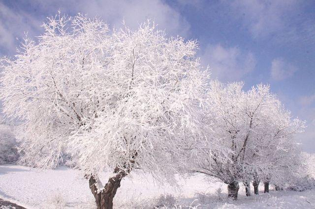 800px-winter_season